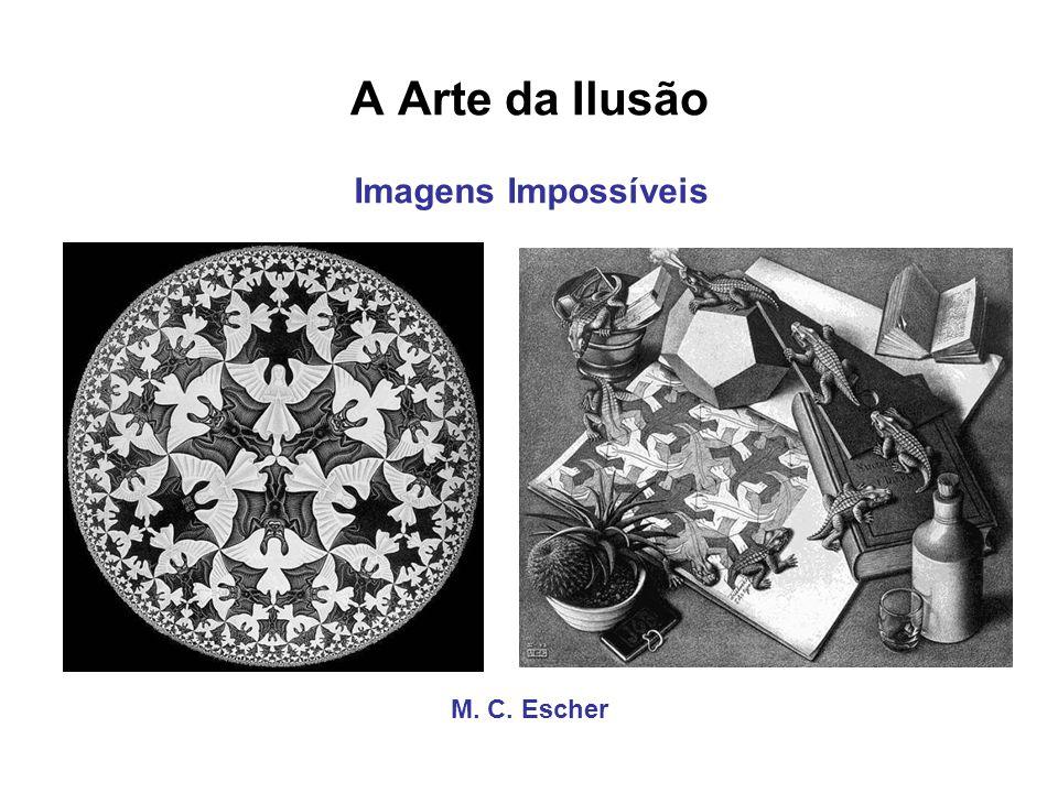 A Arte da Ilusão Imagens Impossíveis M. C. Escher