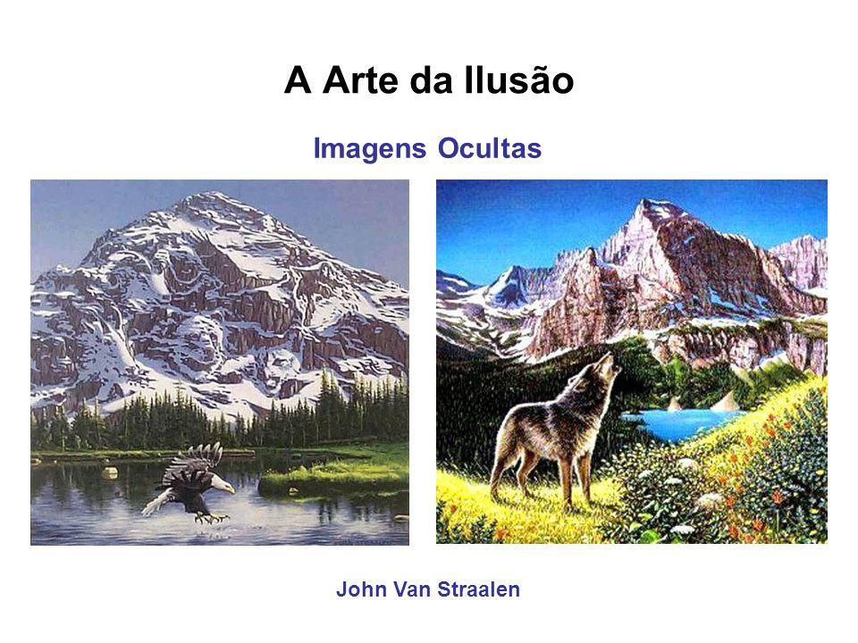 A Arte da Ilusão Imagens Ocultas John Van Straalen