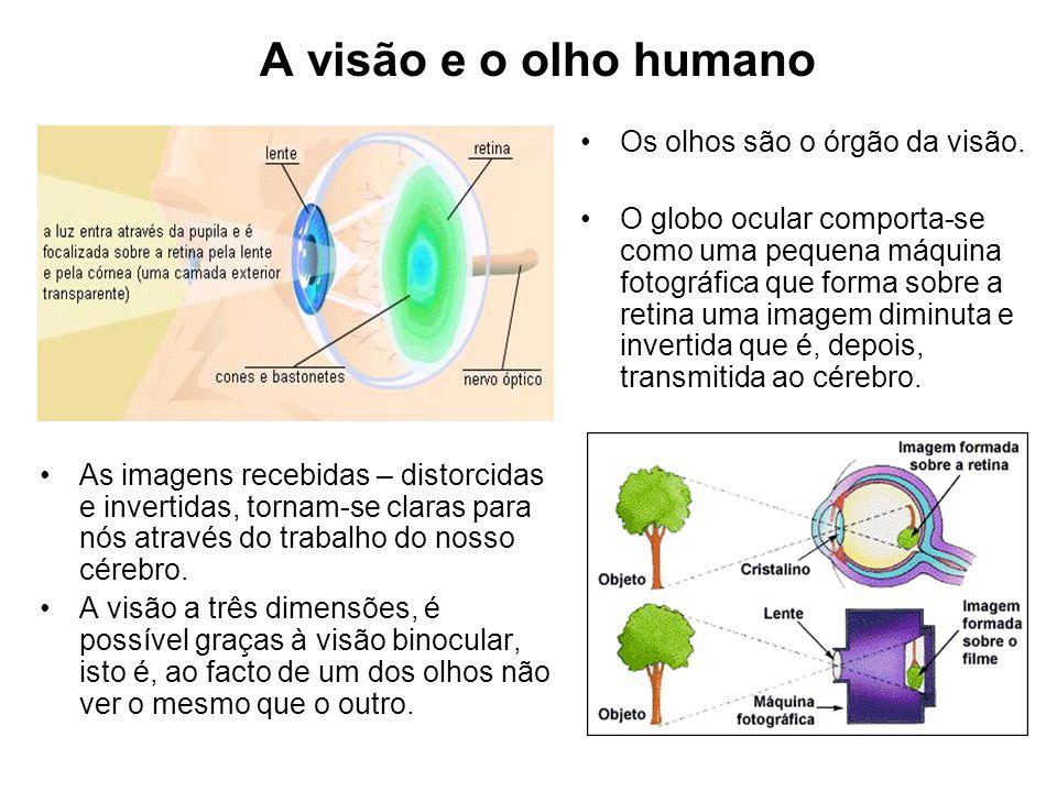 A visão e o olho humano Os olhos são o órgão da visão.