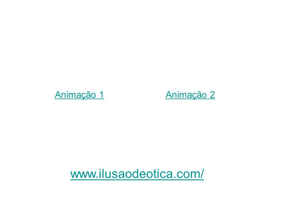 Animação 1 Animação 2 www.ilusaodeotica.com/
