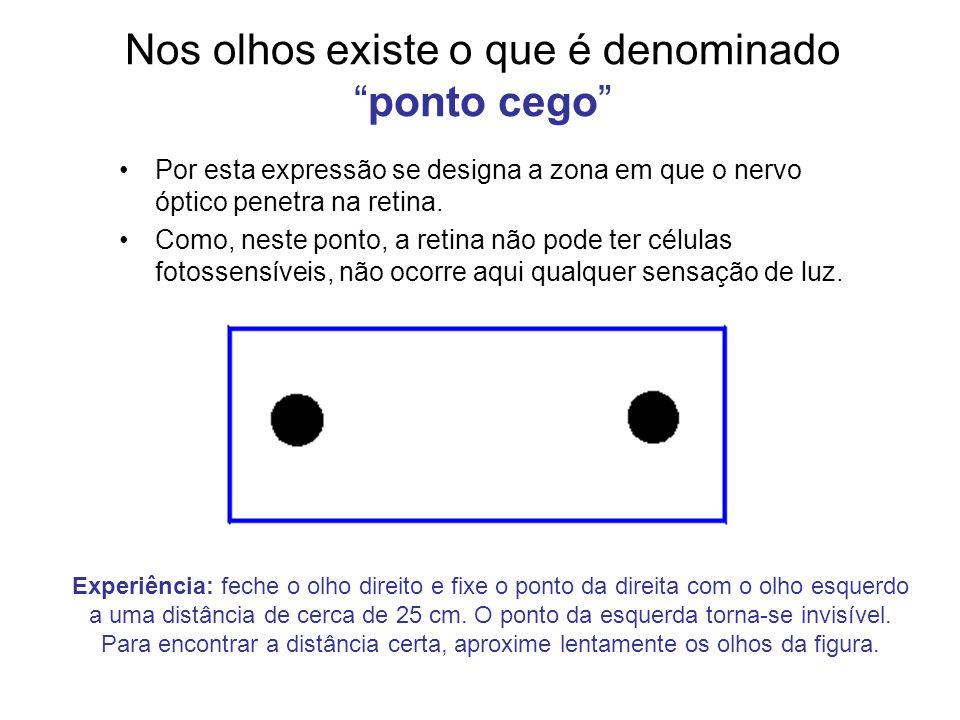 Nos olhos existe o que é denominado ponto cego