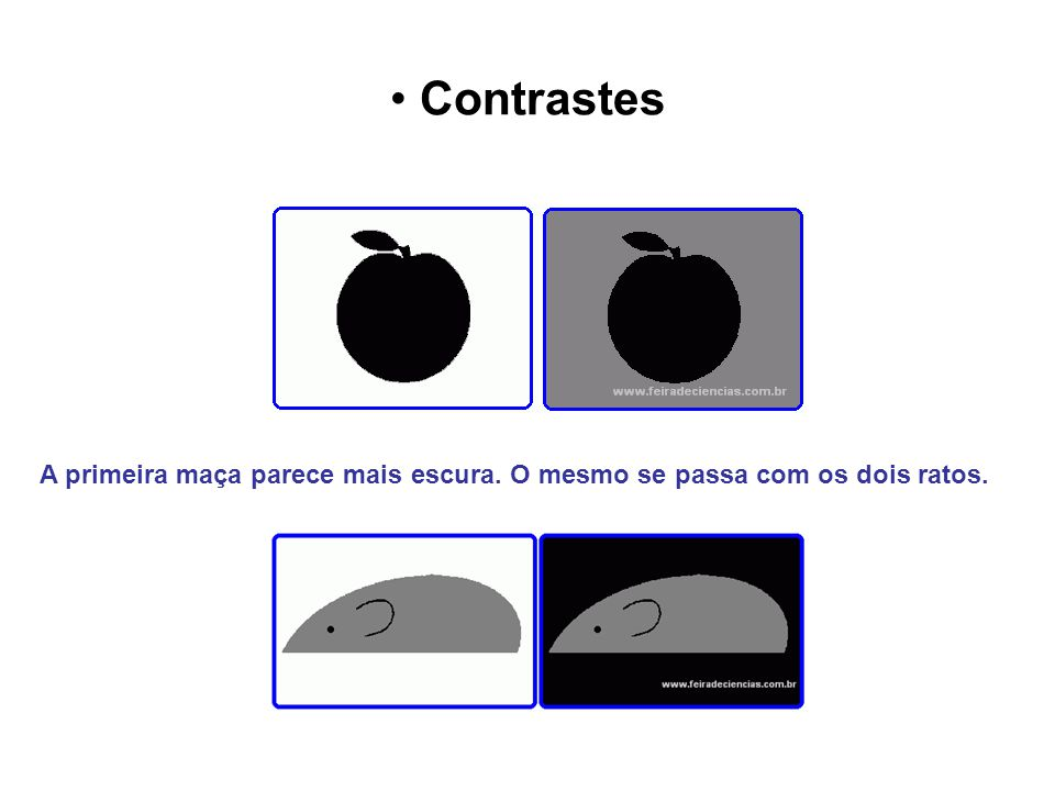 Contrastes A primeira maça parece mais escura. O mesmo se passa com os dois ratos.
