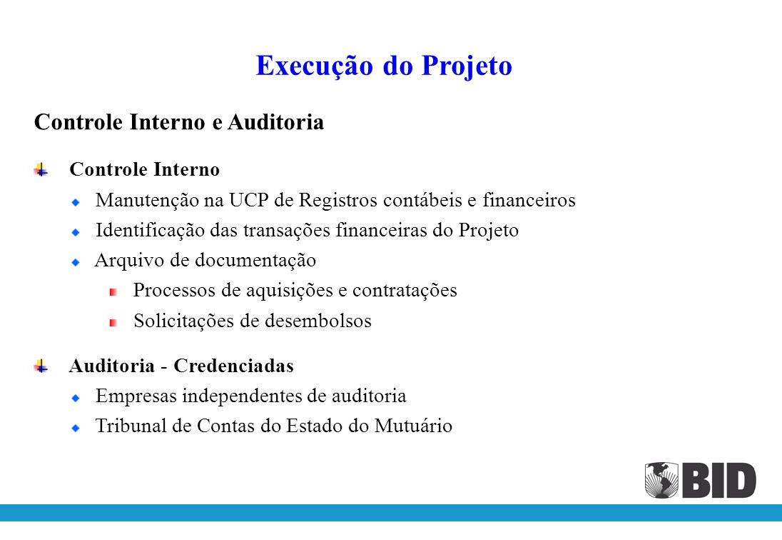 Execução do Projeto Controle Interno e Auditoria Controle Interno