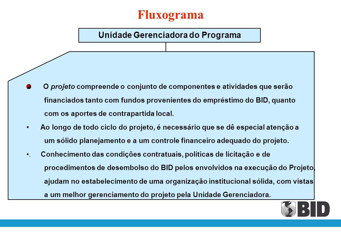 Unidade Gerenciadora do Programa