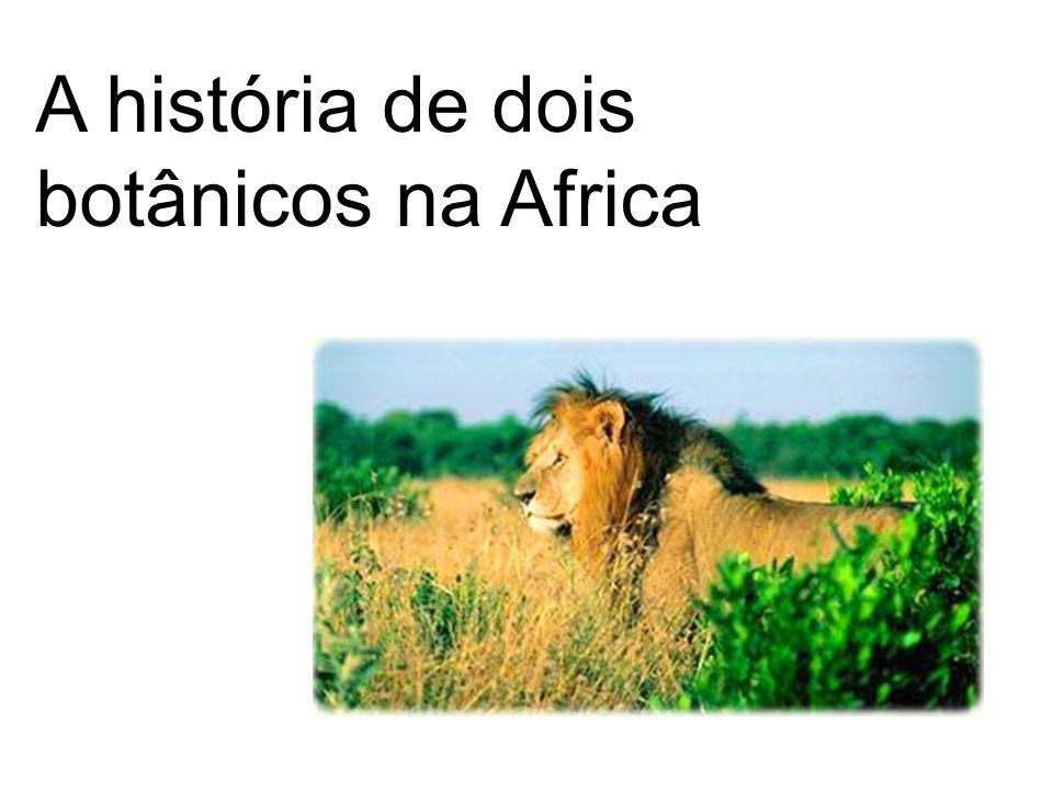 A história de dois botânicos na Africa