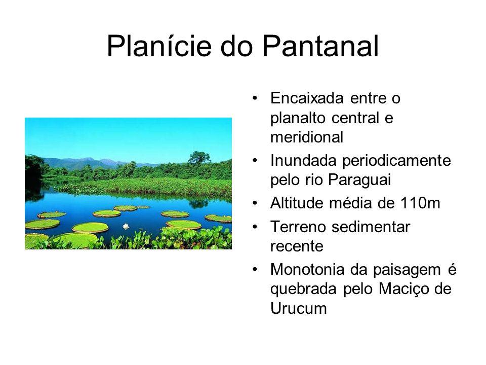 Planície do Pantanal Encaixada entre o planalto central e meridional