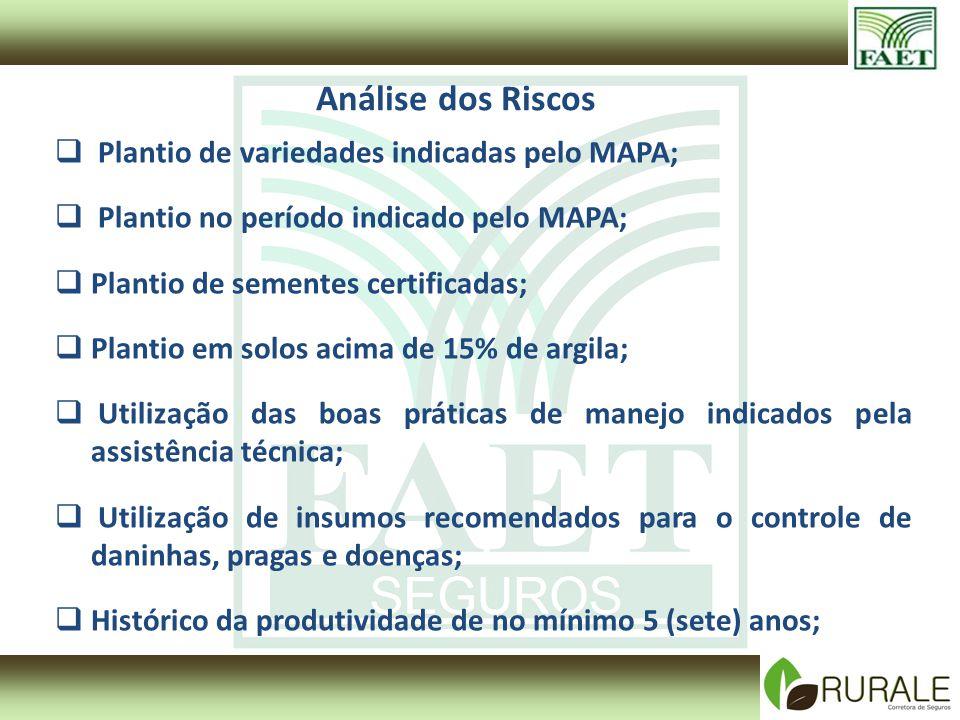 Análise dos Riscos Plantio de variedades indicadas pelo MAPA;