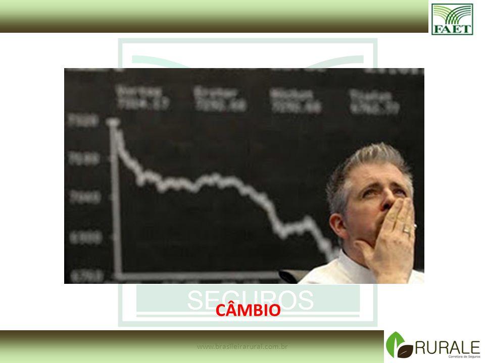 CÂMBIO www.brasileirarural.com.br