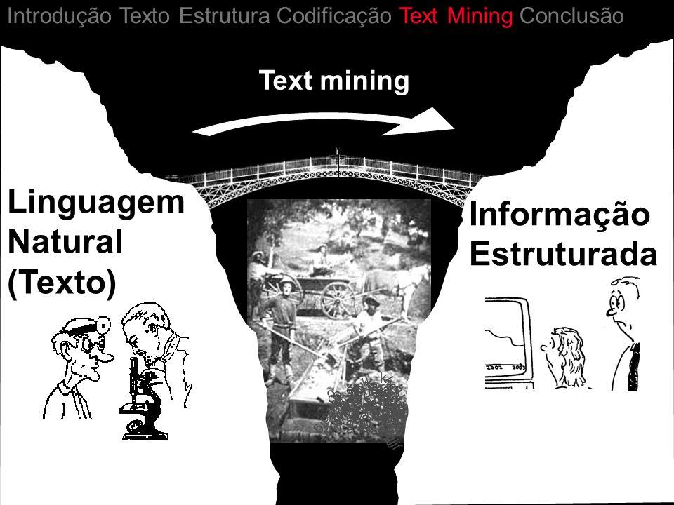 Linguagem Natural (Texto) Informação Estruturada