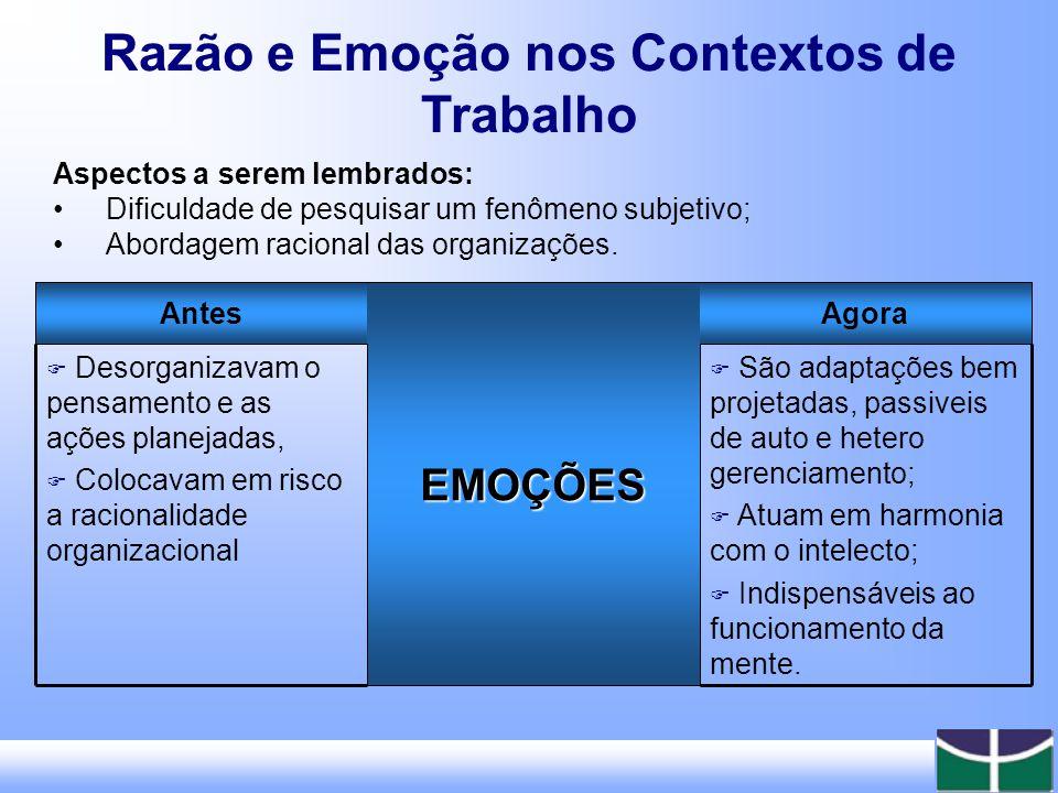 Razão e Emoção nos Contextos de Trabalho