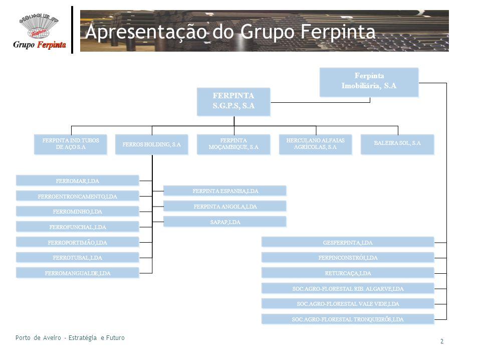 Apresentação do Grupo Ferpinta