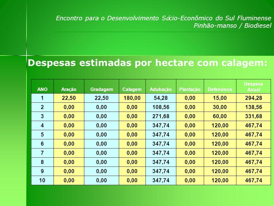 Despesas estimadas por hectare com calagem: