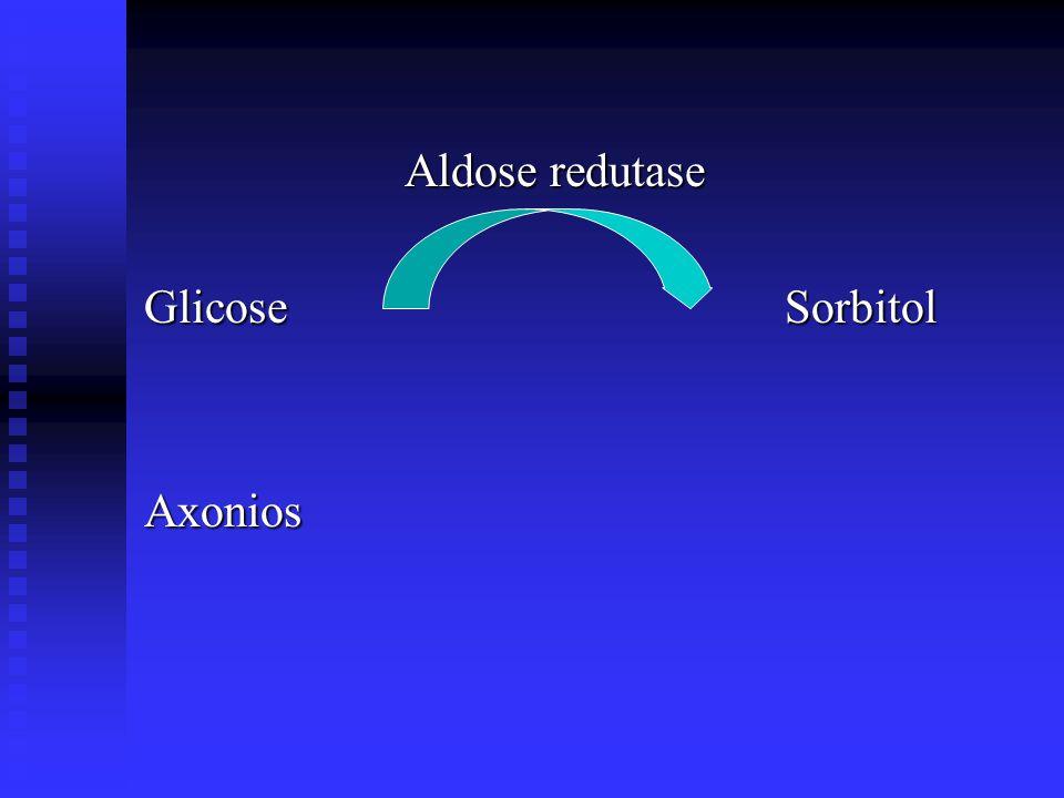 Aldose redutase Glicose Sorbitol Axonios