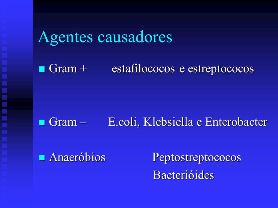 Agentes causadores Gram + estafilococos e estreptococos
