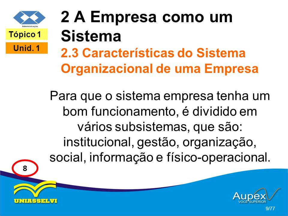 2 A Empresa como um Sistema 2