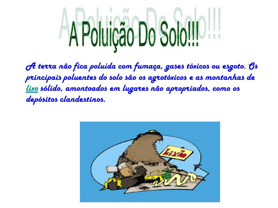 A Poluição Do Solo!!!