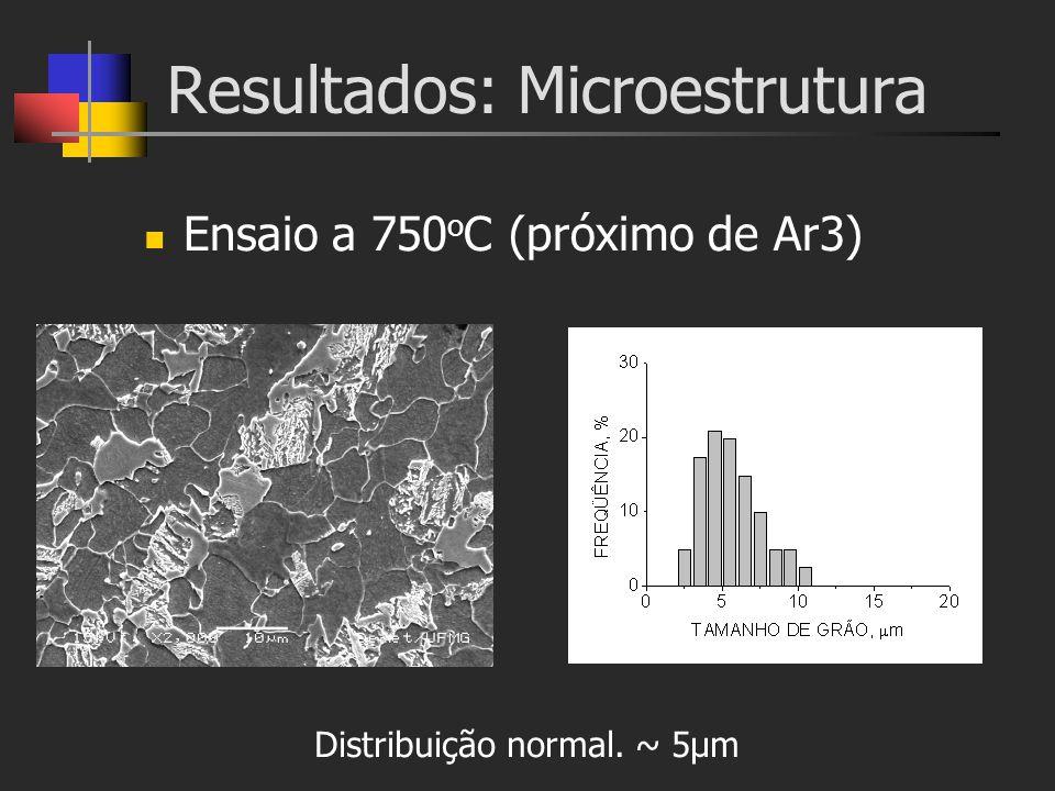 Resultados: Microestrutura