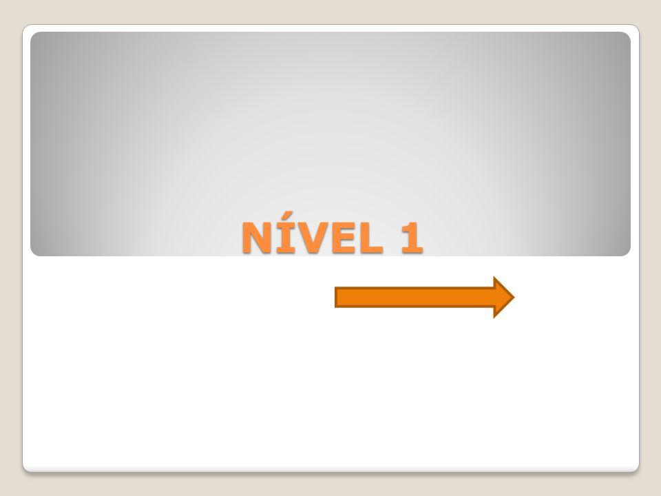 NÍVEL 1
