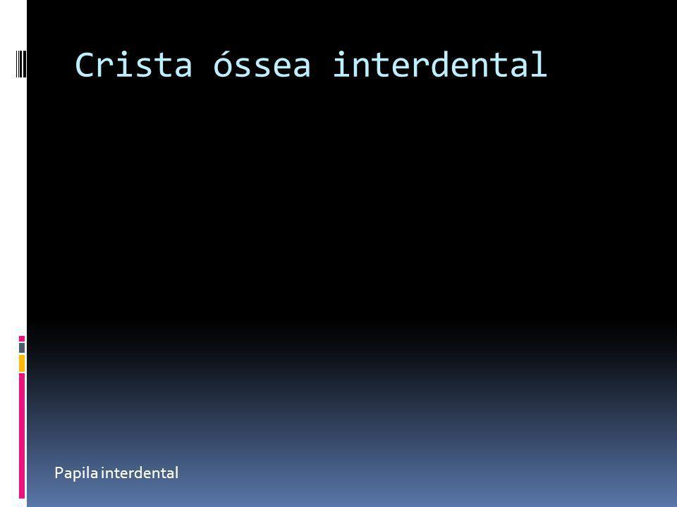 Crista óssea interdental
