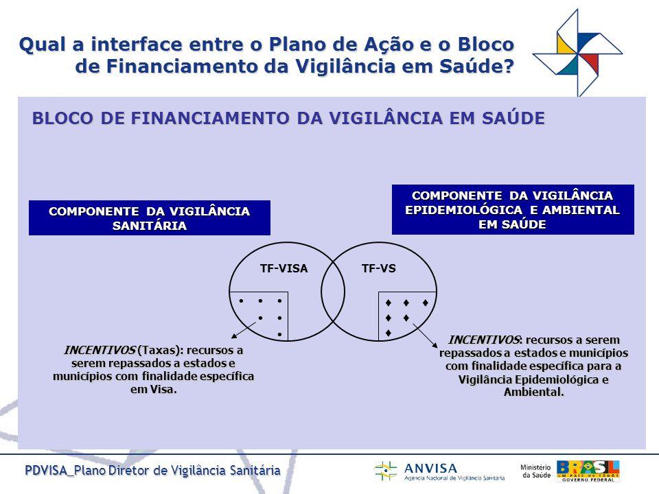 Qual a interface entre o Plano de Ação e o Bloco de Financiamento da Vigilância em Saúde