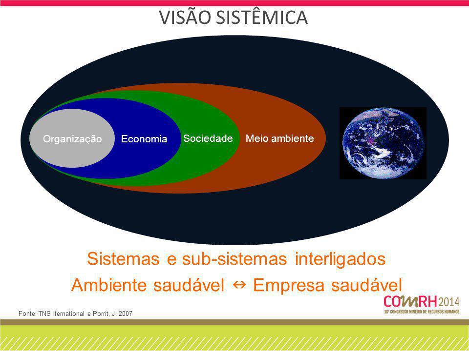 Visão Sistêmica Sistemas e sub-sistemas interligados