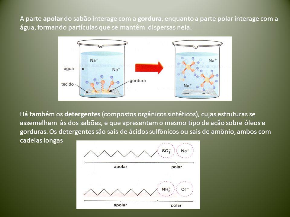 A parte apolar do sabão interage com a gordura, enquanto a parte polar interage com a água, formando partículas que se mantêm dispersas nela.