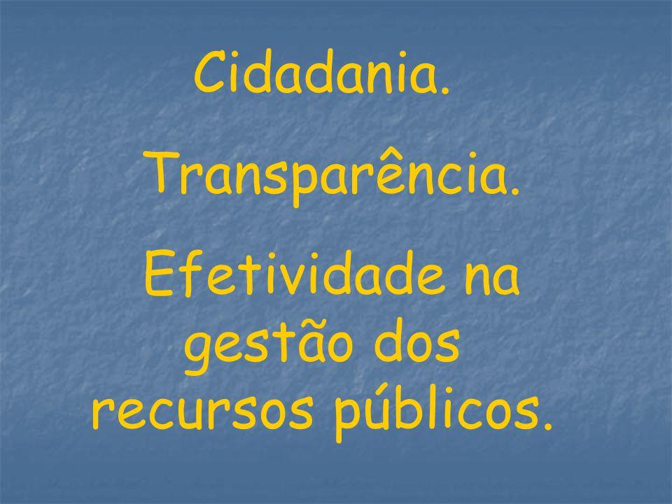 Efetividade na gestão dos recursos públicos.