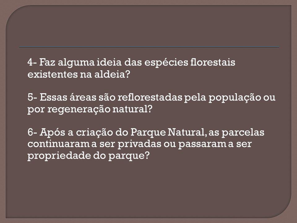4- Faz alguma ideia das espécies florestais existentes na aldeia
