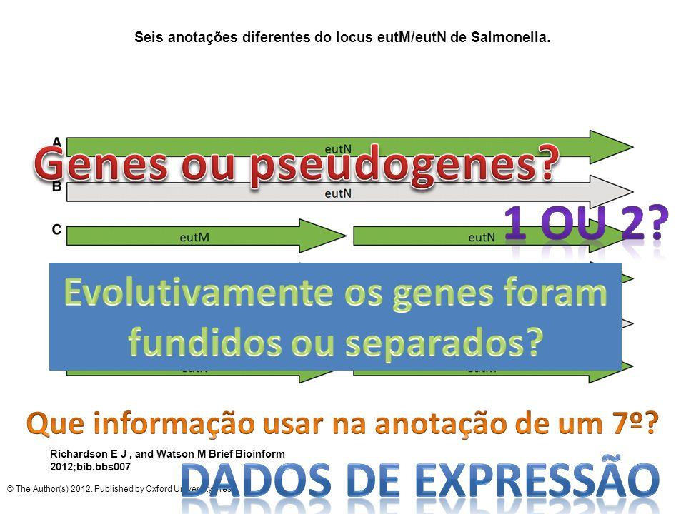 Genes ou pseudogenes 1 ou 2 Dados de expressão