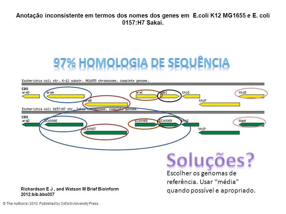 97% homologia de sequência