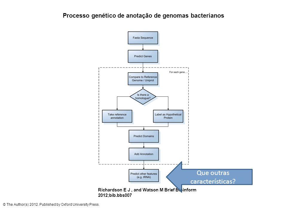 Processo genético de anotação de genomas bacterianos