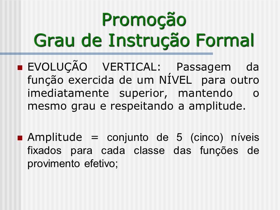 Promoção Grau de Instrução Formal