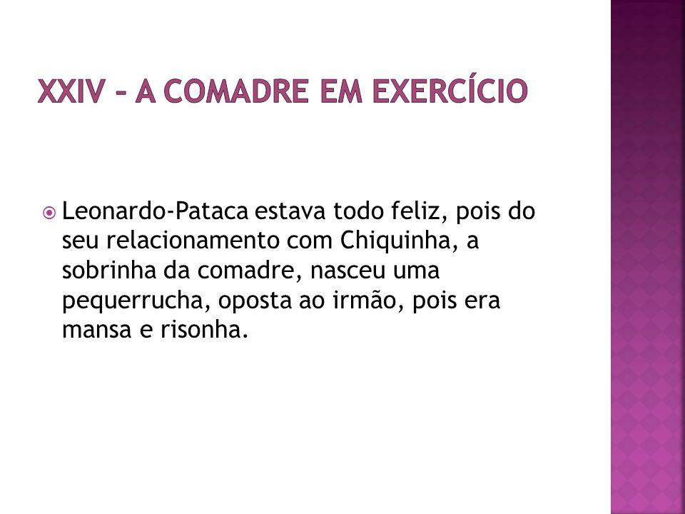 XXIV – A comadre em exercício