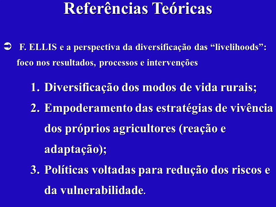 Referências Teóricas Diversificação dos modos de vida rurais;