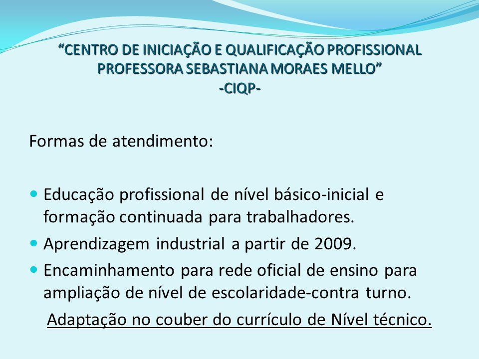 Adaptação no couber do currículo de Nível técnico.
