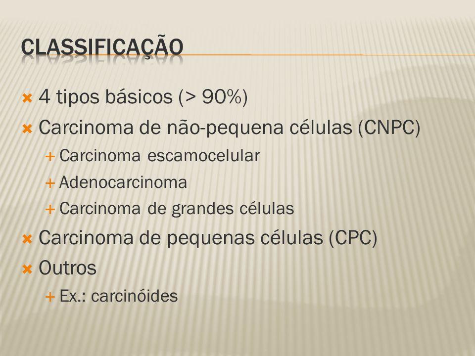 Classificação 4 tipos básicos (> 90%)