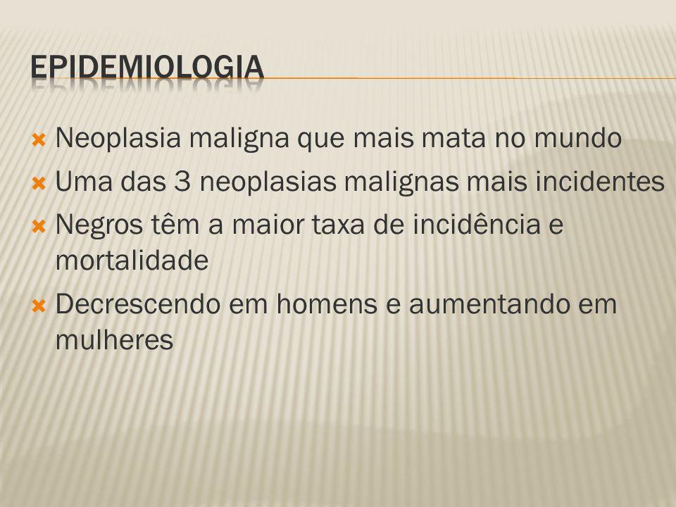 Epidemiologia Neoplasia maligna que mais mata no mundo