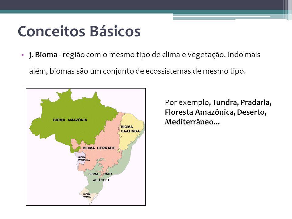 Conceitos Básicos j. Bioma - região com o mesmo tipo de clima e vegetação. Indo mais além, biomas são um conjunto de ecossistemas de mesmo tipo.