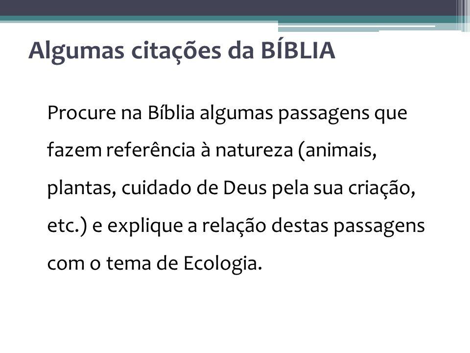 Algumas citações da BÍBLIA