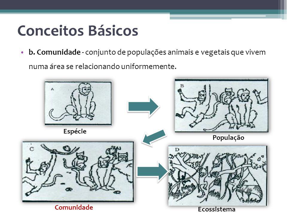 Conceitos Básicos b. Comunidade - conjunto de populações animais e vegetais que vivem numa área se relacionando uniformemente.