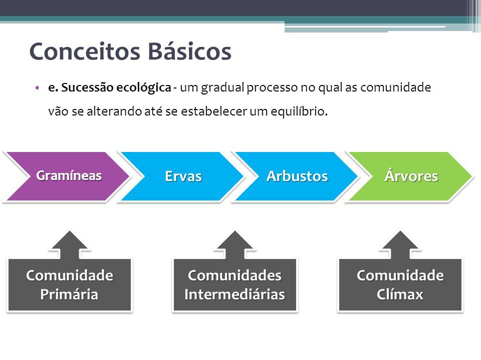 Comunidades Intermediárias