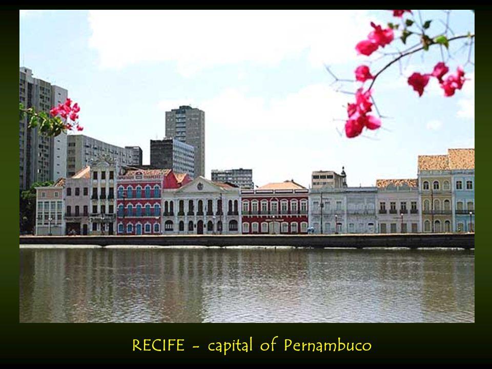 RECIFE - capital of Pernambuco