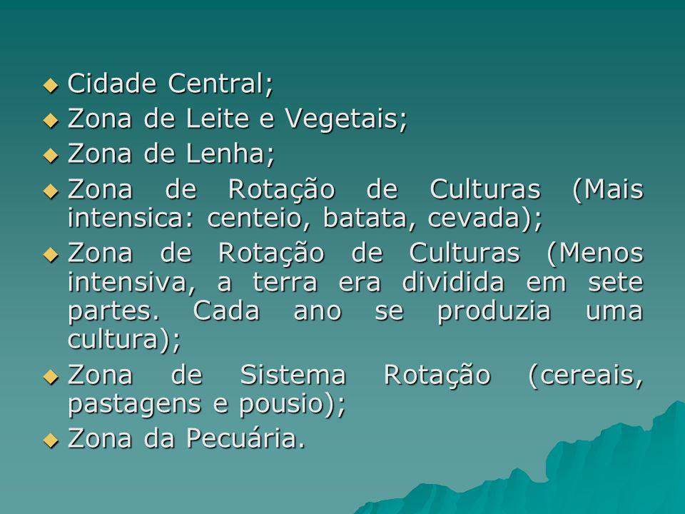 Cidade Central; Zona de Leite e Vegetais; Zona de Lenha; Zona de Rotação de Culturas (Mais intensica: centeio, batata, cevada);