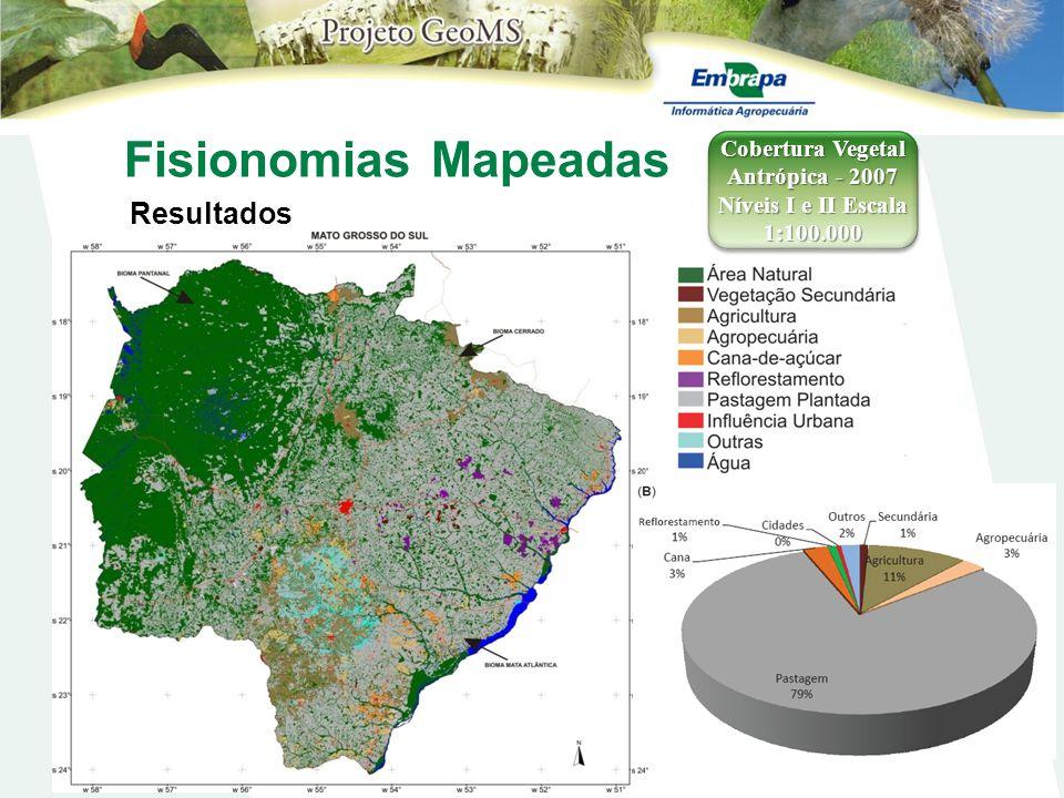 Cobertura Vegetal Antrópica - 2007 Níveis I e II Escala 1:100.000