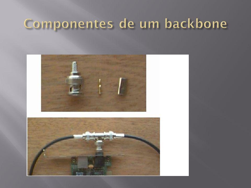 Componentes de um backbone