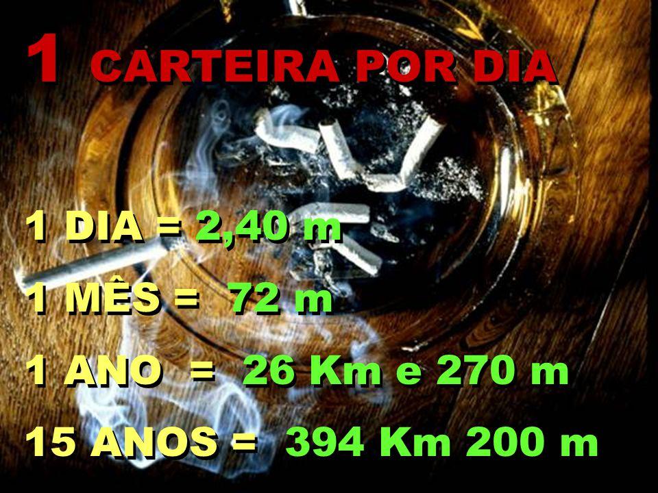 1 CARTEIRA POR DIA 1 DIA = 2,40 m 1 MÊS = 72 m 1 ANO = 26 Km e 270 m