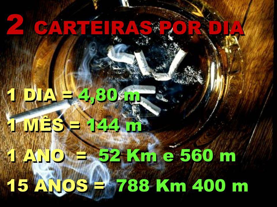 2 CARTEIRAS POR DIA 1 DIA = 4,80 m 1 MÊS = 144 m 1 ANO = 52 Km e 560 m