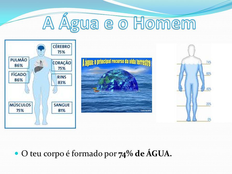 A Água e o Homem O teu corpo é formado por 74% de ÁGUA.