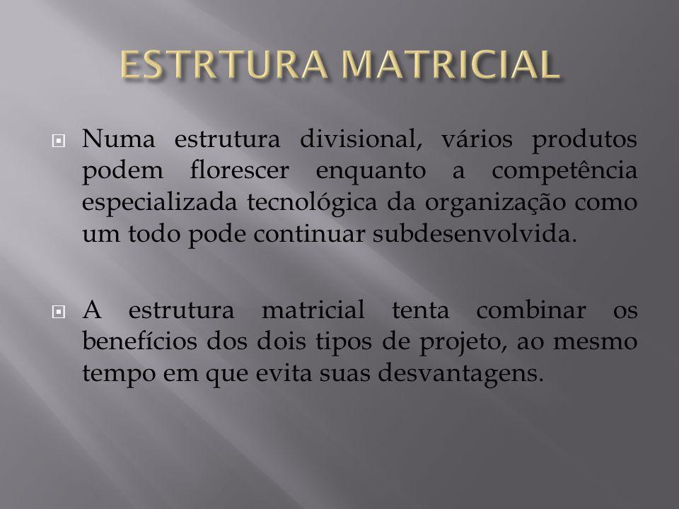 ESTRTURA MATRICIAL