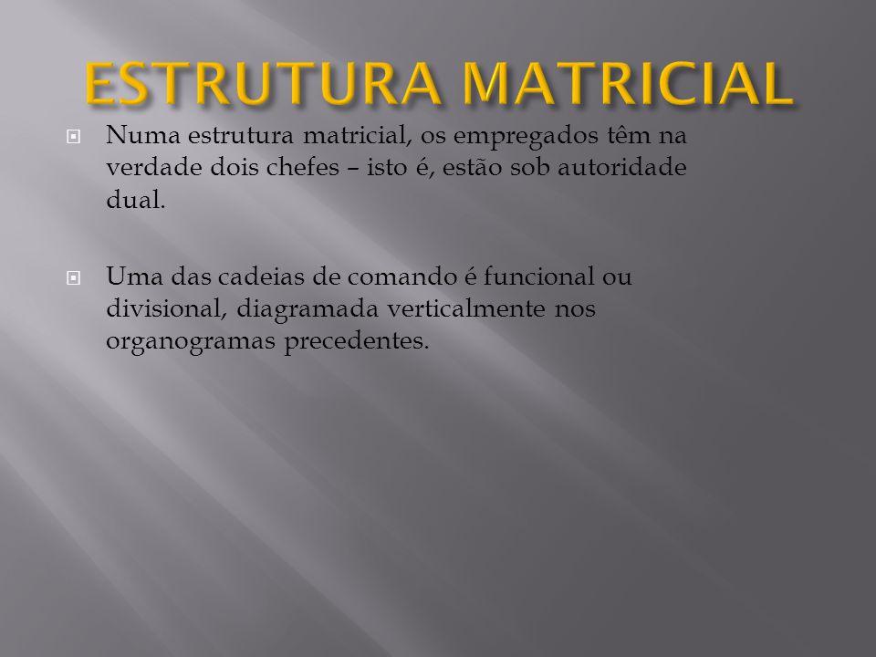 ESTRUTURA MATRICIAL Numa estrutura matricial, os empregados têm na verdade dois chefes – isto é, estão sob autoridade dual.